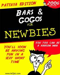 Bars & Gogos for Newbies book cover