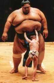 Kid pushing sumo wrestler's tummy